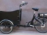 neues_elektro_pedelec_e_bike_trike_lastenrad_lastenfahrrad_bakfiets_dreirad_neu_ahaus