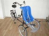 therapeutisches_dreirad_von_roam_rider_plus_mit_kindersitz_bremen